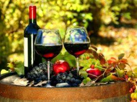 892719 300x225 - Праздник молодого вина