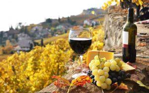 mobile 84948 300x188 - Праздник молодого вина