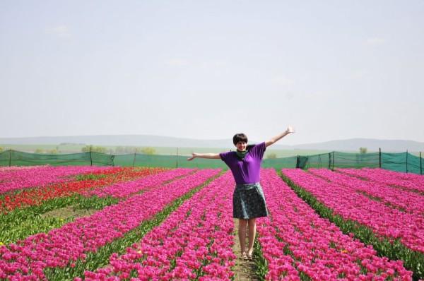 148846884058b83b68966f7 - Черновцы-Украинский Париж + долина тюльпанов