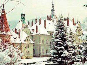 karpaty zima 1 300x225 - Новогодний отдых на Закарпатье (отель Виноградов)