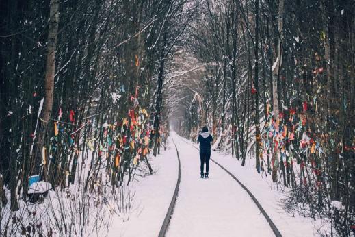 15447863275c1391970d6e3 - Тараканов, Дубно + Тоннель любви (Зимний вариант)