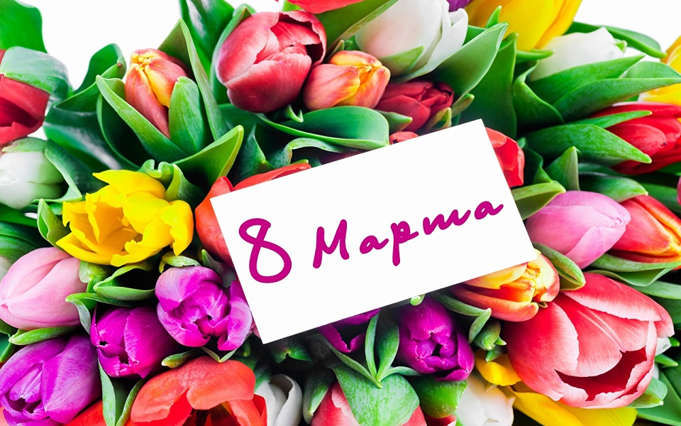 March_8_Tulips_Russian_516412_1280x854