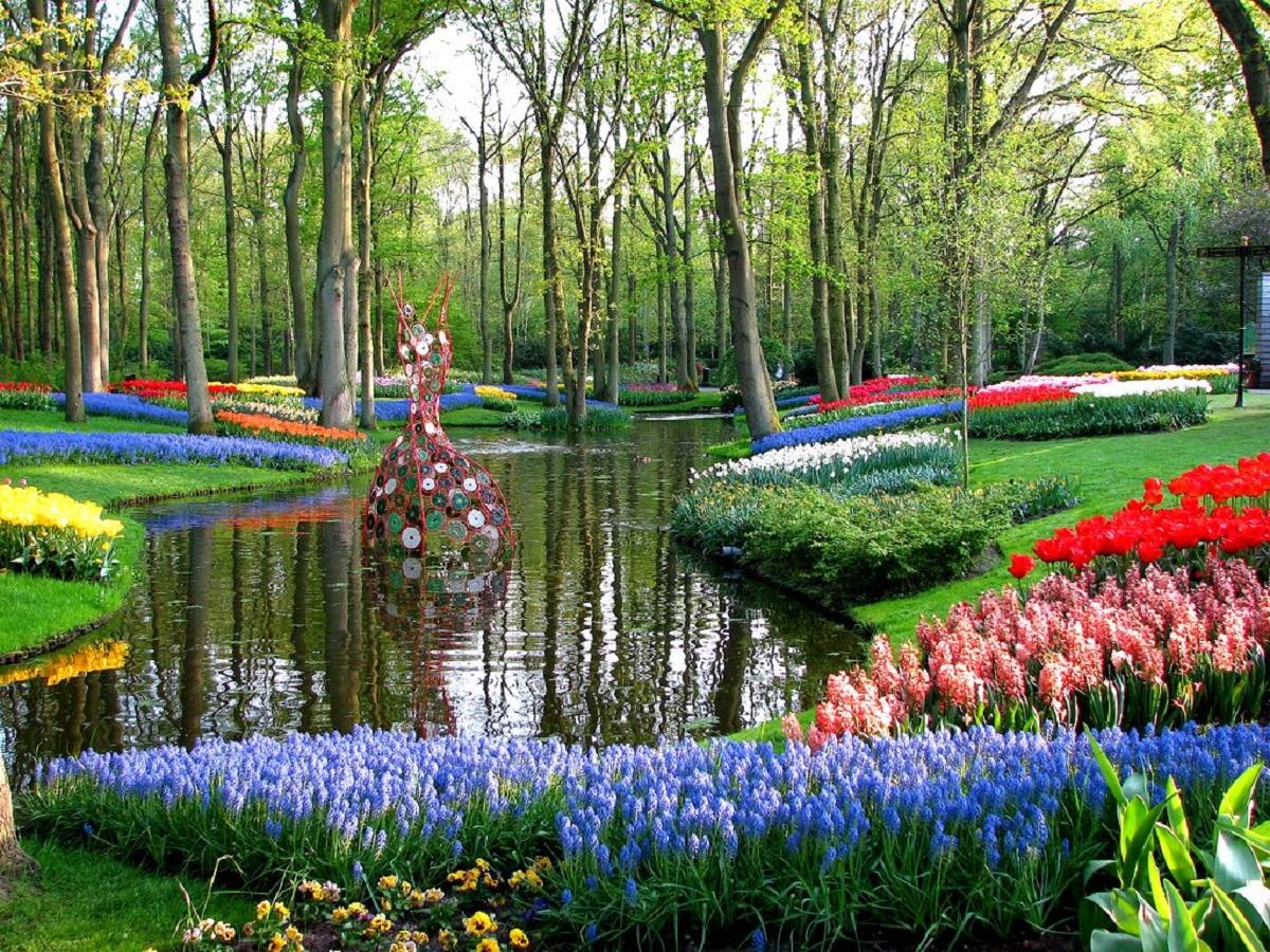 jkkjhsr - Нидерланды.I Love amsterdam