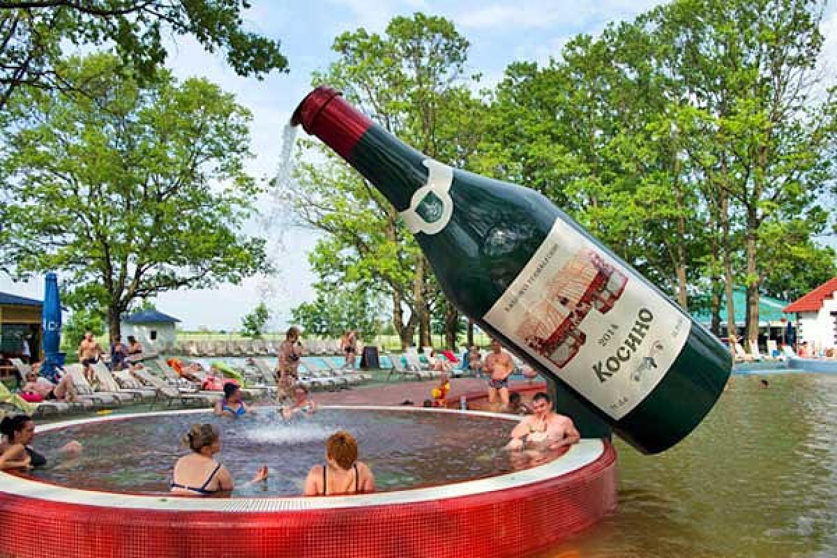 15502410025c66cceadc7ef - Замок Паланок, термальні води Косино і вино