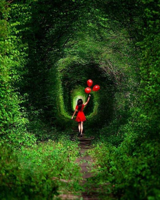 15511947565c755a84a5c93 - Тараканів, Дубно + тунель кохання