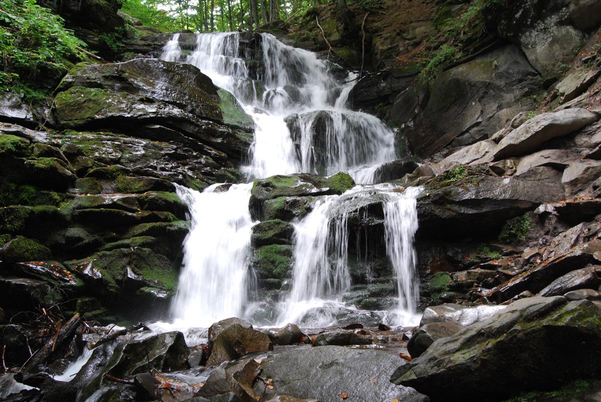 """15523107725c8661f4bae53 - Бліц тур в Карпати """"Водопад Шипіт + долина нарцисів"""""""