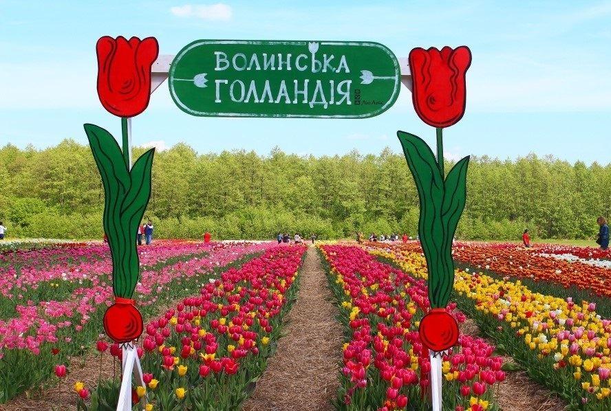 15535139365c98bdd089663 - Волынская Голландия: Луцк + долина тюльпанов