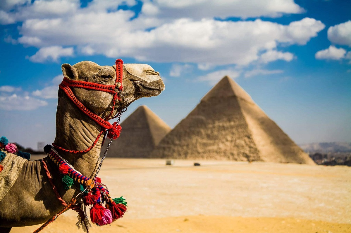 Internet v YEgipti - Доступный интернет в Египте