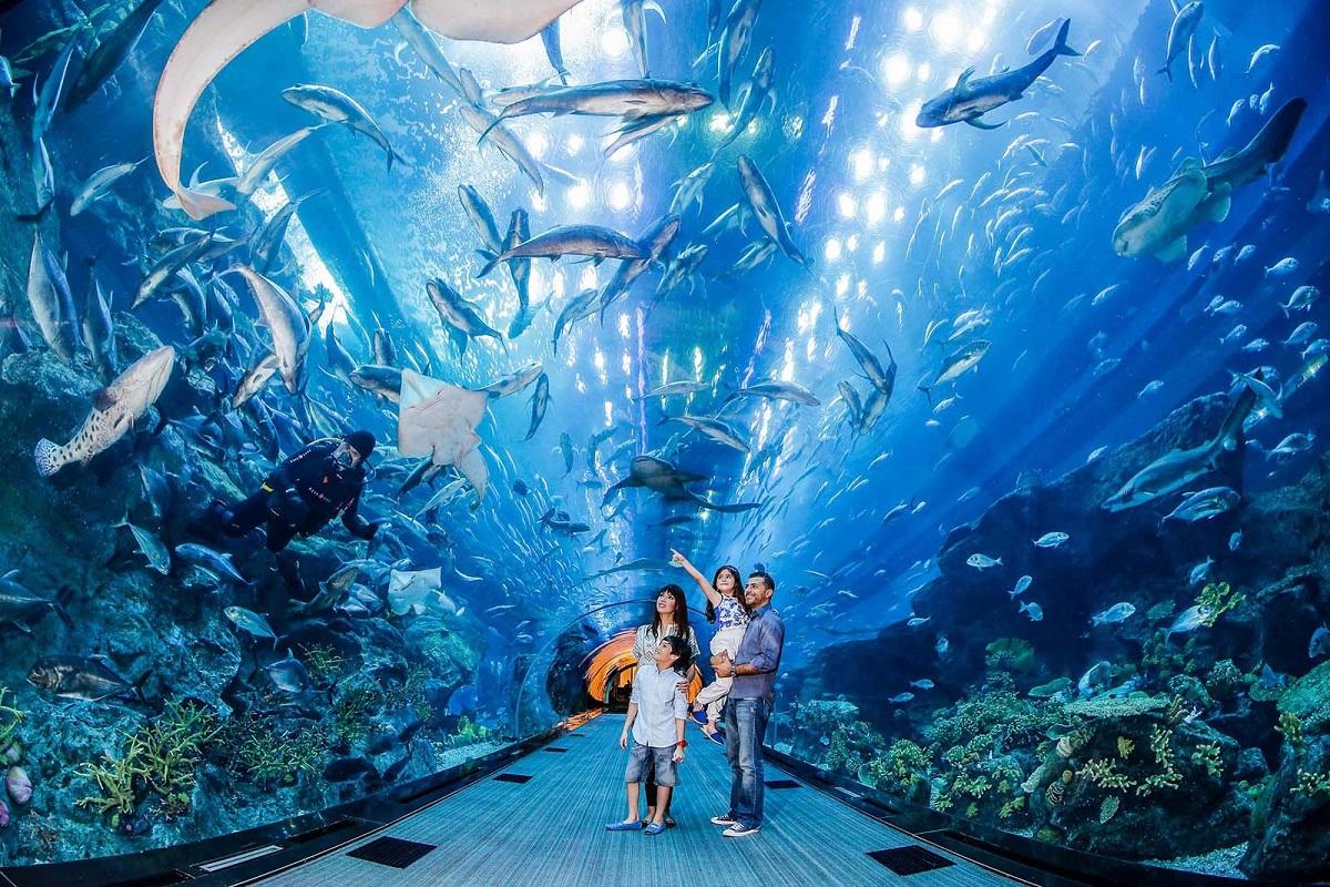 Prozrachnyj tunnel v Okeanaryume - ОАЭ