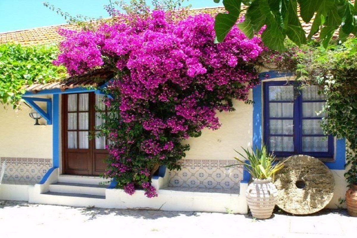 679b97d1bf092a3a - 9 причин поехать на остров Корфу