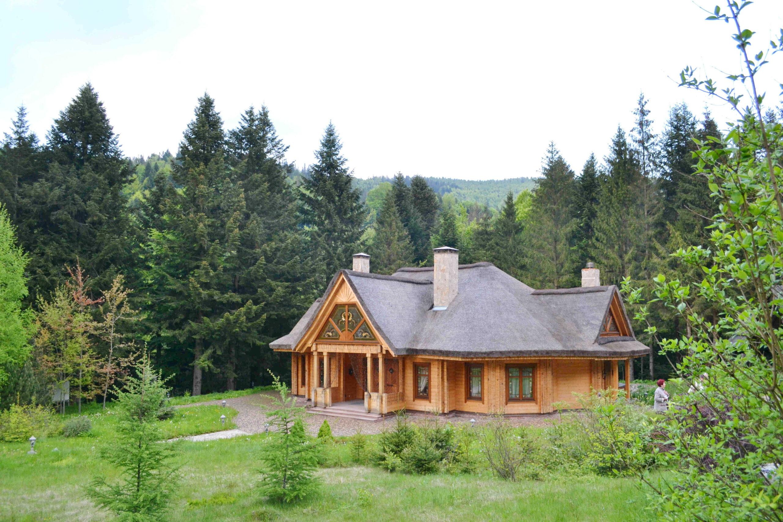 15670886415d67e001a3def scaled - Синегора, Пнивский замок + Бухтивецкий Водопад